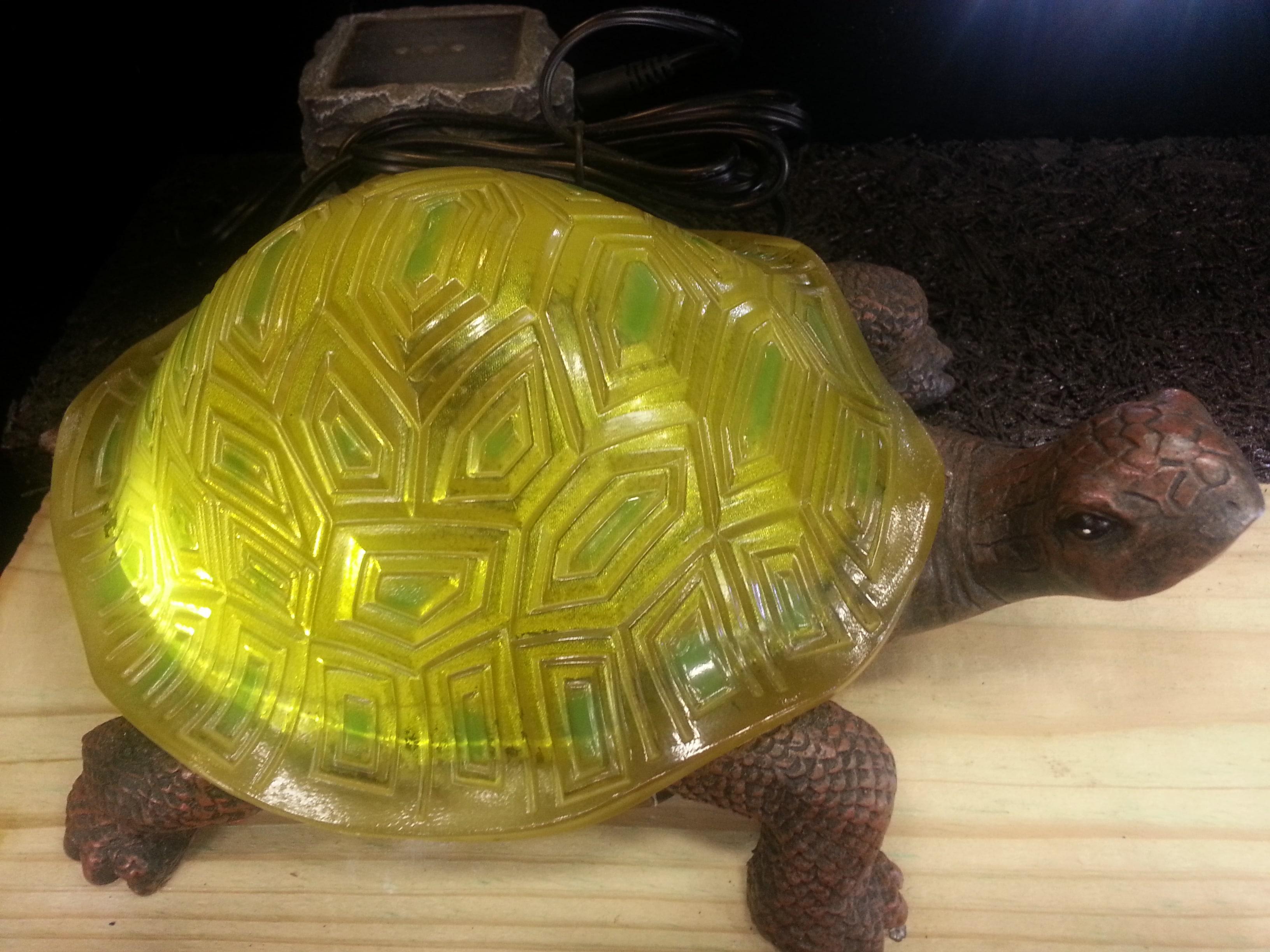 Turtle solar light