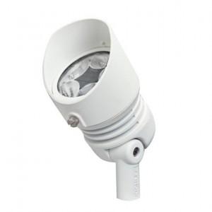 radiax Spot Light Fixture