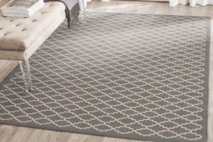Safavieh outdoor rug