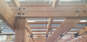 Abeline cedar pergola top on the inside