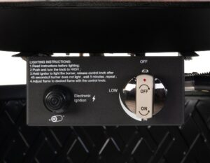 Fire Sense Wagner control panel